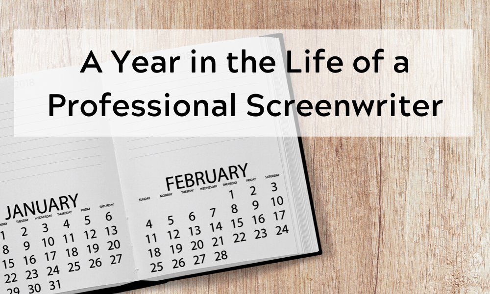 A Year in the Life of a Professional Screenwriter