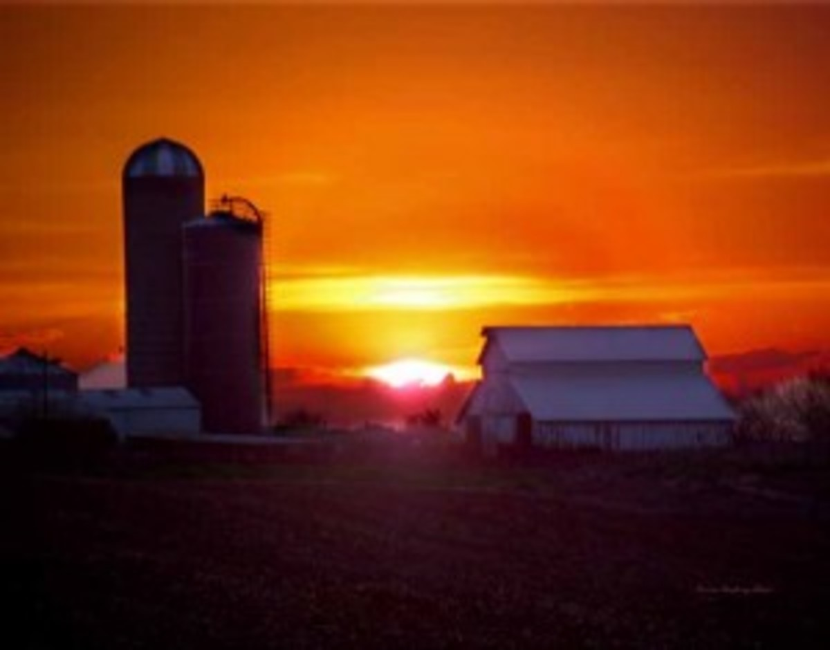 Farm midwest sunset