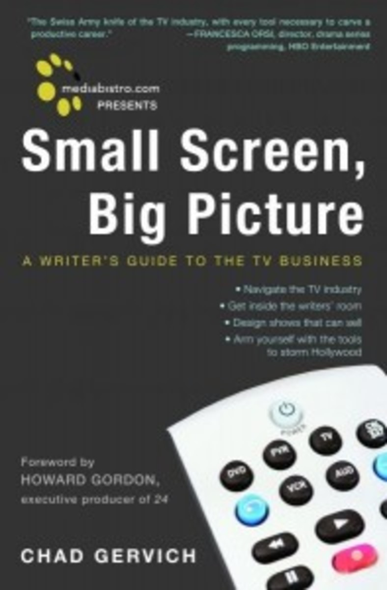Small Screen, Big Picture by Chad Gervich