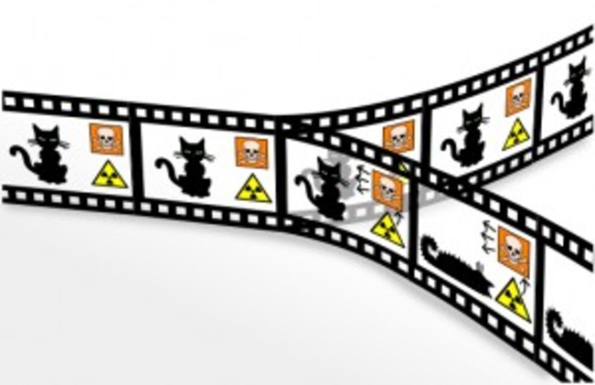 Schrödinger cat alive or dead