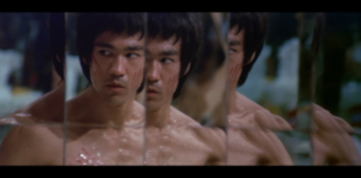 Every protagonist is in a final battle with the self against his or her opposite in the climax of any film in order to achieve his character arc. The inner journey has never been so well personified in an action film as in Enter The Dragon, starring Bruce Lee.