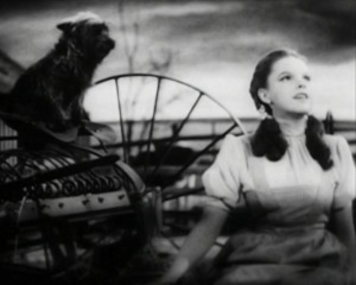 Dorothy Gale in The Wizard of Oz