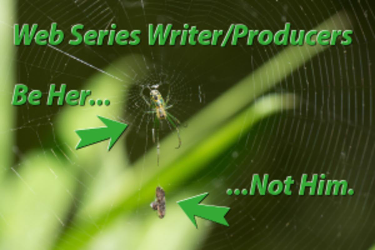 Spider Web Series