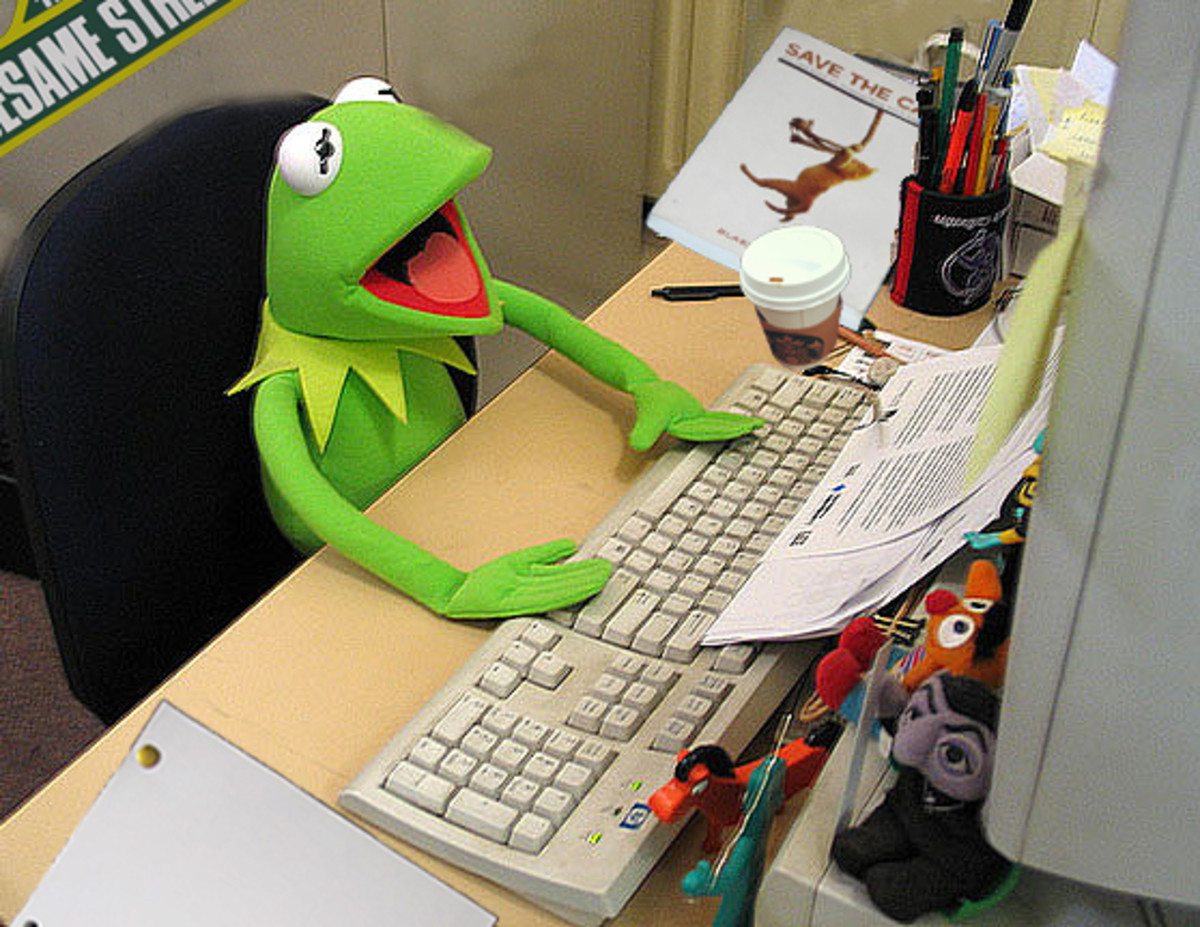 Kermit at the Computer