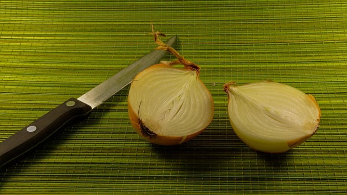 onion-697191_640