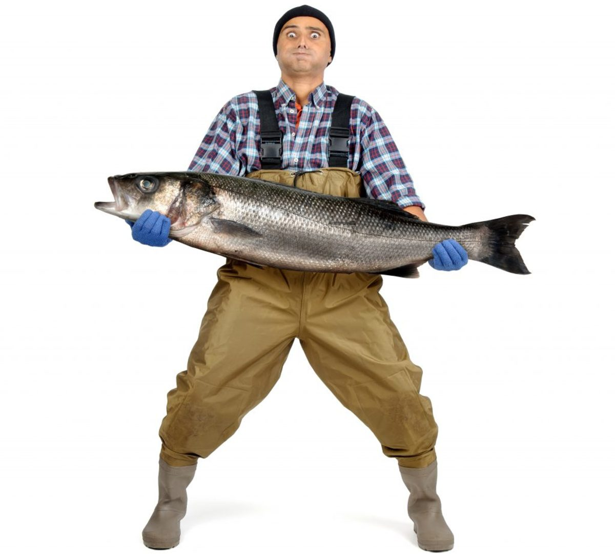 Looking to catch a Big Fish? A rep, meeting or sale? Barri Evins' advice on creating an irresistible lure: the ultimate bait that gets the industry to bite. #scriptchat #screenwriting