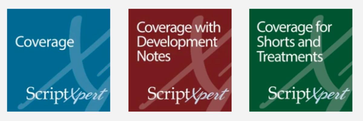 scriptxpert screenplay notes